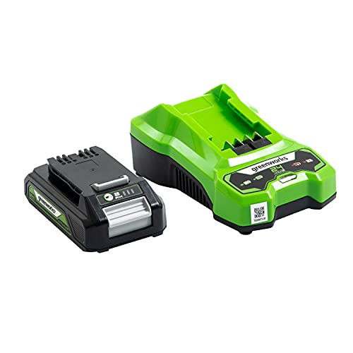 Greenworks Battery G24B2 and Charger G24UC (Li-Ion 24V 2Ah 60W Output 60 Minutes Charging Time for 2Ah Appropriate for All Devices from the 24V Greenworks Line)