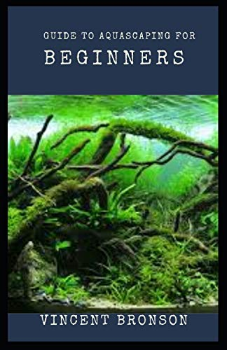 Guide to Aquascaping for Beginners: Aquascaping is to aquariums as gardening is to potted plants.
