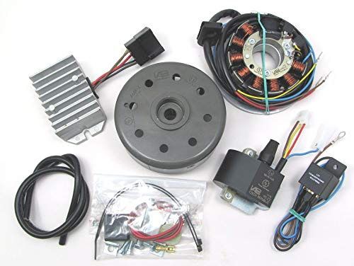 Powerdynamo VAPE Ignition System Stator for MZ ETZ 250 251 301 DC System 12 Volt