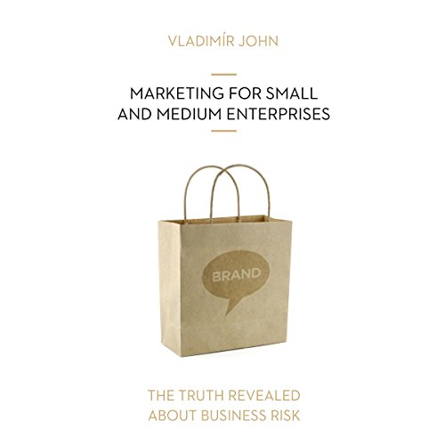 Marketing for small and medium enterprises (The truth revealed about business risk) audiobook cover art