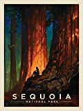 Vintage Signs Sequoia National Park Nature Cathedral Vintage Metal Pub Club Cafe bar Home Wall Art Decoration Poster Retro 12x8 Inch
