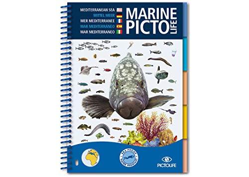 Marine Pictolife Mediterráneo: Méditerranée