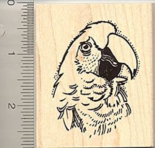 Parrot Portrait (Face) Rubber Stamp - Wood Mounted