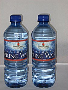 Absopure Water Corp Natural Spring Water, 24 oz