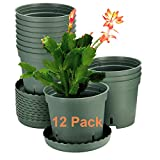 12 Pack Plant Pots, ZOUTOG 6 inch Plastic Pots for Plants with Drainage Hole and Trays, Plants not Included