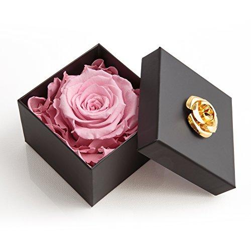 ROSEMARIE SCHULZ Heidelberg Infinity Rose haltbar 3 Jahre in Box Rose konserviert Geschenk für Frauen und Freundin (Rosa, 1 Rose)