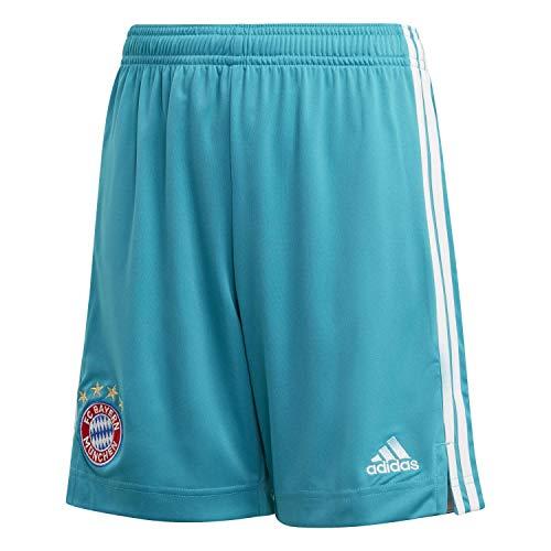 adidas Kinder 20/21 FC Bayern Goalkeeper Short Torwartshort, Labgrn, 152