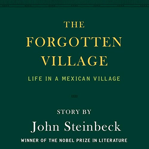 The Forgotten Village audiobook cover art