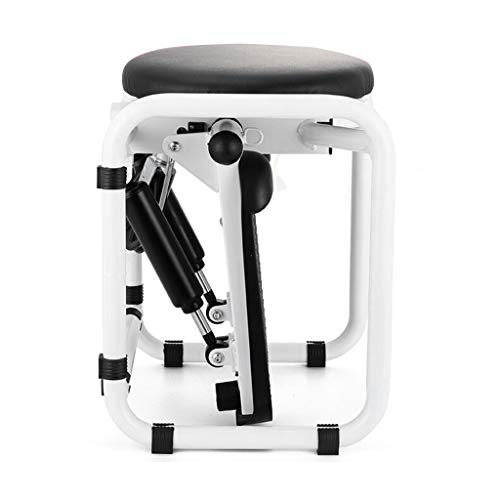 Wotryit Fitness Stair Stepper, Stepper Home Mini Hydraulic Mute...