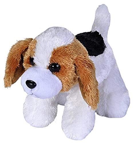 upupupup Juguetes Blandos Peluches Peluche Juguete Lindo Juguete Cock 18Cm @ Dog Beagle