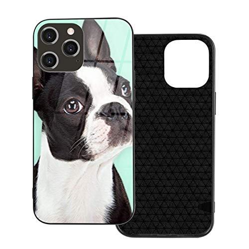 Funda para teléfono Funda para teléfono Boston Terrier para iPhone 12/12 Mini / 12 Pro / 12 Pro MAX Carcasa Trasera de Vidrio Templado + TPU para iPhone 12-6.1 Pulgadas