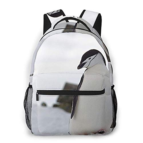 Lawenp Mochila Unisex de Moda, Mochila antártica con pingüino y Suelo de Nieve, Mochila Ligera para Ordenador portátil para Viajes Escolares, Acampar al Aire Libre