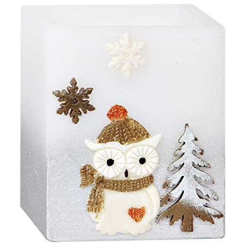 Adpal Kerzen Manufaktur Lampion carré Bougie chauffe-plat 10 x 10 x 12 cm Bougie de Noël Motif chouette Bonnet Argent Blanc