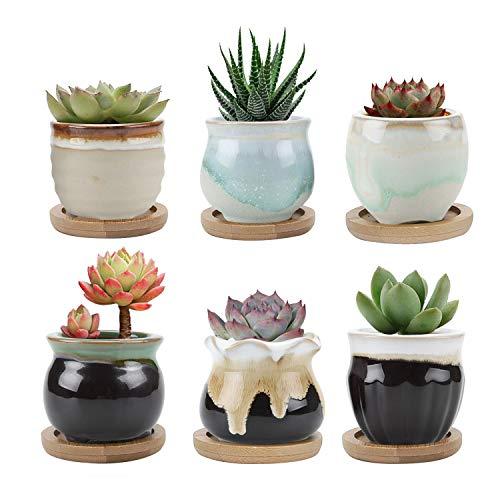 T4U Mini Laufglasur Sukkulenten Töpfchen Keramik mit Untersetzer 6er-Set für Miniaturpflanzen