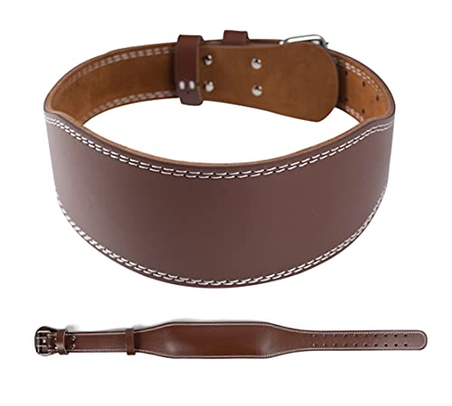 Nicynin Leather Weightlifting Belt, Fitness Belt Exercise Lumbar Back Belt Support Heavy Training Gym for Men and Women (Brown, L)