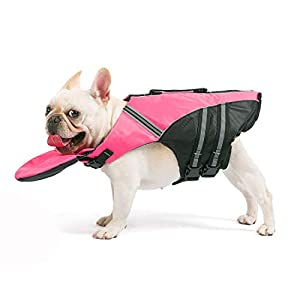 French Bulldog Life Jacket – Professional Dog Safety Vests for Swimming, Superior Buoyancy & Rescue Handle (Chest Girth: 17″-30″ Weight: 17-28LB)