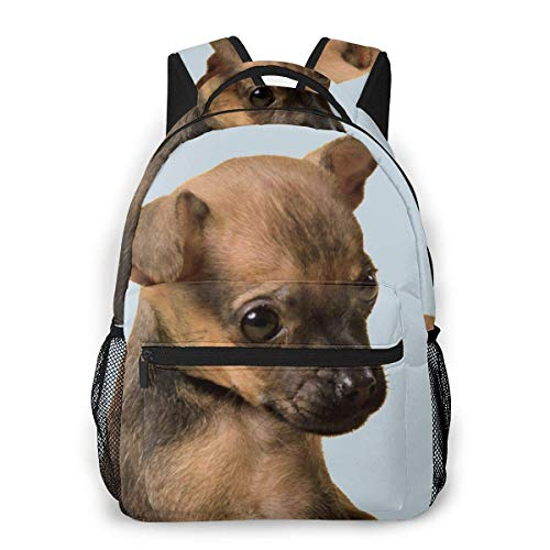 Lawenp Fashion Unisex Backpack Little Cute Brown Dog Bookbag Lightweight Laptop Bag for School Travel Outdoor Camping