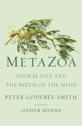 Compare Textbook Prices for Metazoa: Animal Life and the Birth of the Mind  ISBN 9780374207946 by Godfrey-Smith, Peter
