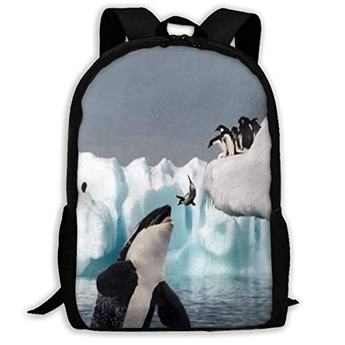 TTmom Schulrucksack,Schüler Bag,Rucksack Damen Herren Backpack Fish-penguin-whale-jump-image-gallery-800x600 Zipper School Bookbag Daypack Travel Rucksack Gym Bag for Man Women