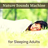 Nature Sounds Machine for Sleeping Adults