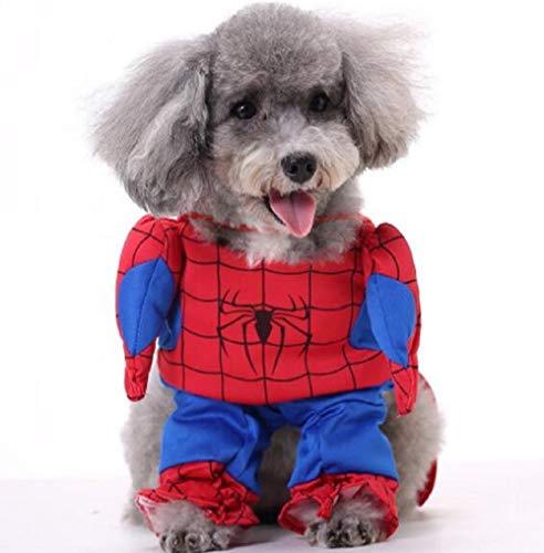 - Hund Spiderman Kostüme