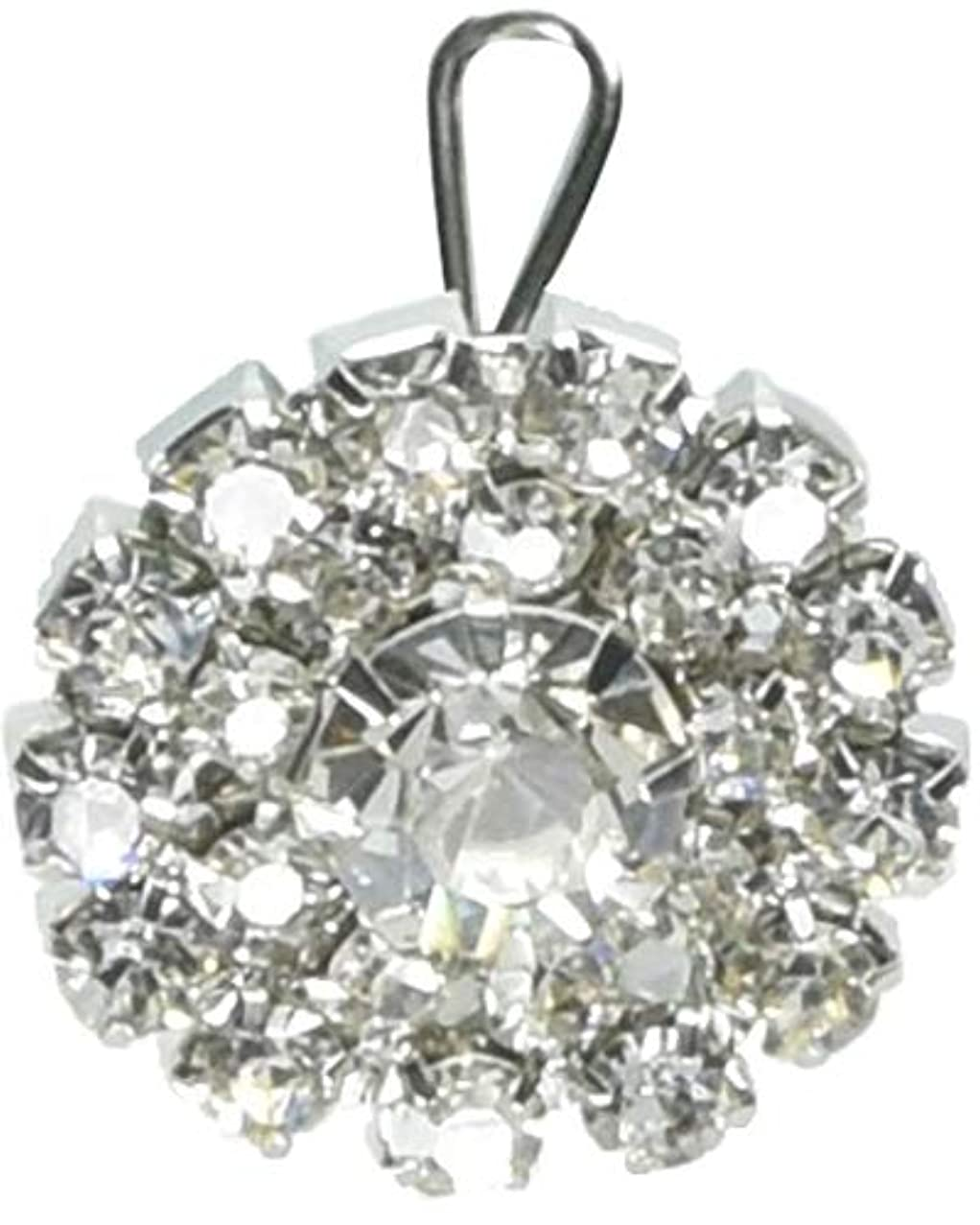 Expo Round Starburst Rhinestone Button BTN1307CR,Crystal