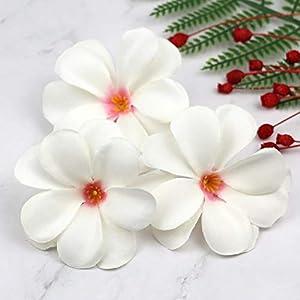 Artificial and Dried Flower 12pcs Pink White Hawaiian Plumeria Frangipani Silk Flower Heads 3″ Artificial Flowers Head Fabric Floral Supplies