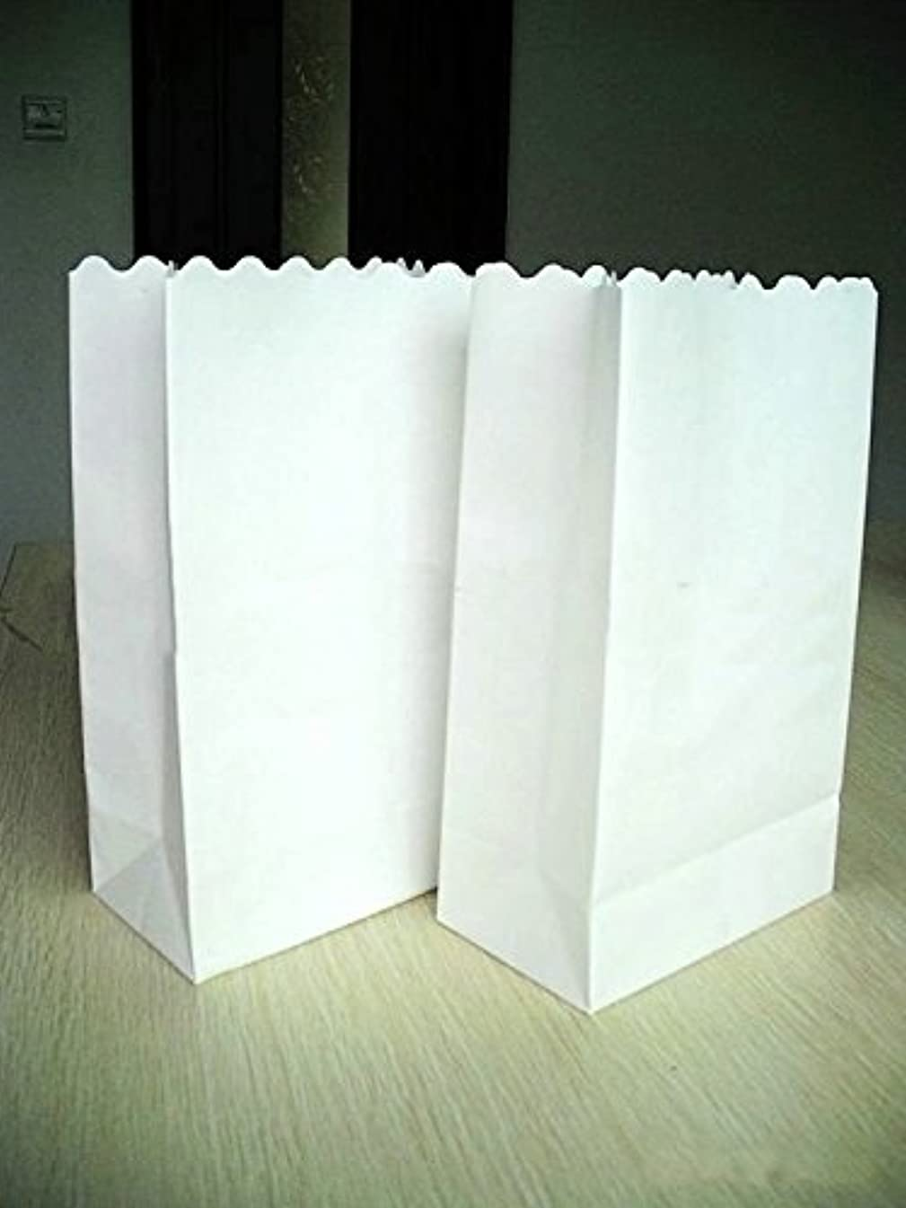 Joinwin? Pack of 20 New White Luminary Bags - Plain white Design - Wedding, Reception, Party and Event Decor - Flame Resistant Paper - Luminaria