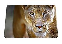 22cmx18cm マウスパッド (雌ライオン顔目捕食者) パターンカスタムの マウスパッド