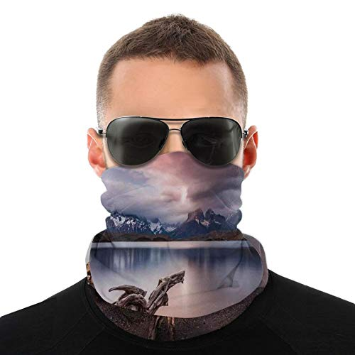 FULIYA Dustproof Windproof Variety Head Scarf,Driftwood On The Coast With Reflection Of The Mountains In The Lake Digital Image,Men Women for Outdoor Cycling
