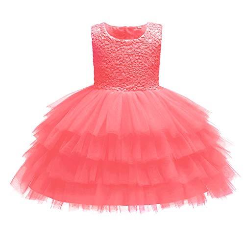 IMEKIS Vestido de niña recién nacida con encaje floral bordado con volantes tutú sin mangas princesa bowknot fiesta tul falda boda cumpleaños formal noche desfile vestido de bola
