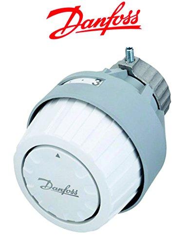 Danfoss RA 2920 Behördenmodell mit Inbusbefestigung , Fostschutzfunktion
