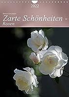 Zarte Schoenheiten - Rosen (Wandkalender 2022 DIN A4 hoch): Edle Koeniginnen der Blumen in ganzer Bluetenpracht (Planer, 14 Seiten )