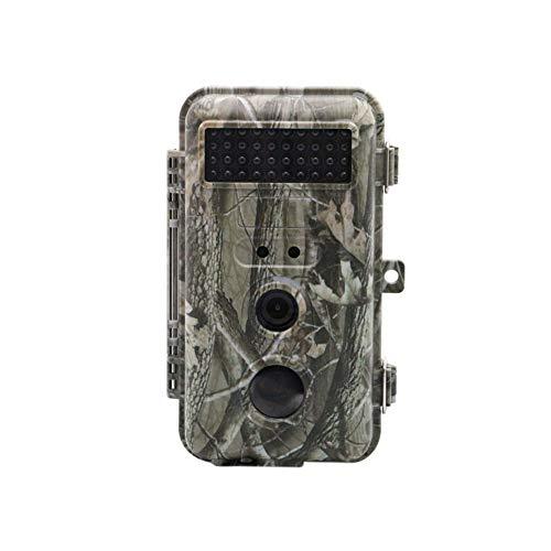 WYYHAA Wildkamera Fotofalle mit Bewegungsmelder/ 16MP 1080P HD Tier-Kamera, IR LED Nachtversion IP56 Wasserdicht 0.6s Trigger-Geschwindigkeit für wild lebende Tiere Monitoring & Home Security & Jagd
