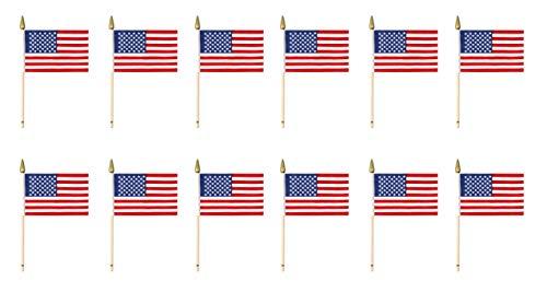 Beistle 50980 12-Pack Amerikanische Rayon-Flagge, 4-Zoll von 6-Zoll