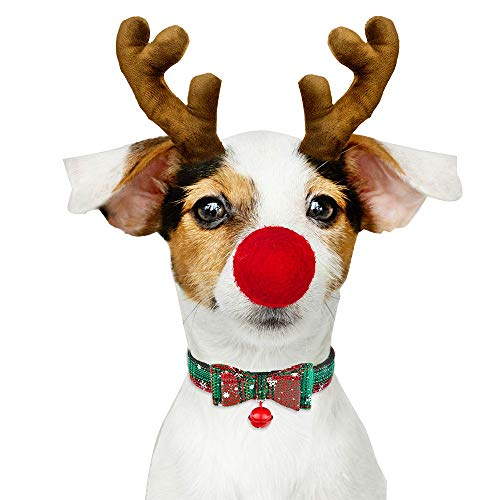 Mummumi Haustierhalsband Hund Katze Weihnachten Halsband Schleife Knoten mit Glöckchen Halsband Verstellbar Weiches Haustier Kostüm für Katzen Welpen Kleine Hunde, S:Adjustable 17-27cm, grün