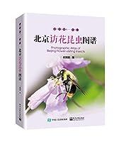 北京访花昆虫图谱
