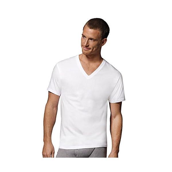 Fruit of The Loom Men's V-Neck T-Shirt Multipack (Medium, White (5 Pack))