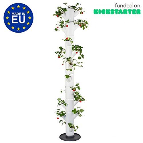 GUSTA GARDEN Sissi Strawberry (Infinity, weiß) - Pflanzgefäß/Topf/Pflanzturm/Hochbeet für Erdbeeren - für Balkon, Garten und Terrasse - Erdbeeren und Kräuter anpflanzen