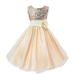 Beige Sequin Mesh Tull Dress Sleeveless