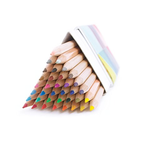 OOLY, The Triangle Colored Pencils, Set of 36 (128-116)