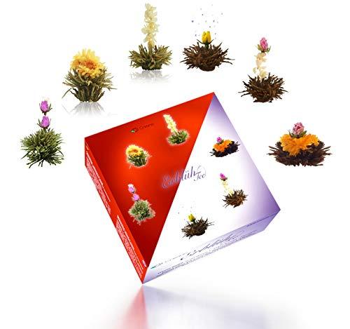 Creano Teeblumen Mix – Erblühtee in edler Geschenkbox - Weißer & Schwarzer Tee (6 Verschiedene Sorten Teerosen)
