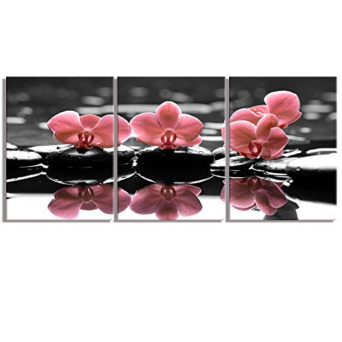 Visual Art Decor Black White Grey Pink Orchids Picture Canvas Prints Beautiful Elegant Flowers Zen Stone Wall Art for Modern Spa Yoga Home Bedroom Office Bathroom Decoration