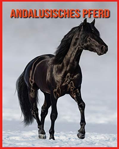 Andalusisches Pferd: Unglaubliche Bilder und Wissenswertes über Andalusisches Pferd