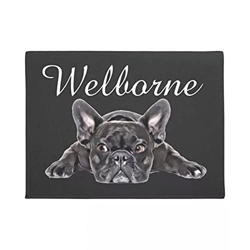 RQJOPE Camino de Entrada Estera de Puerta de Bienvenida Alfombra de Puerta de Bulldog francés Blanco y Negro Alfombra Divertida Un Coche de Goma Antideslizante Decoración hogareña-40x60cm