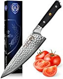 Chef Knife: Best Professional Quality 8 Inch Japanese AUS10 67-Layer High Carbon Damascus Stainless...