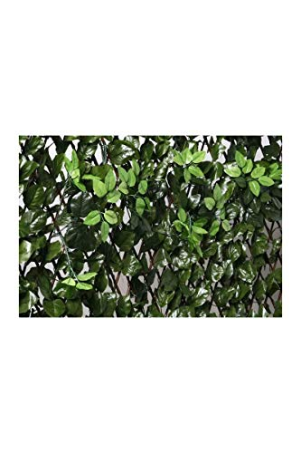Catral Extendable Trellis with Leaves and Buds 1x2 m green