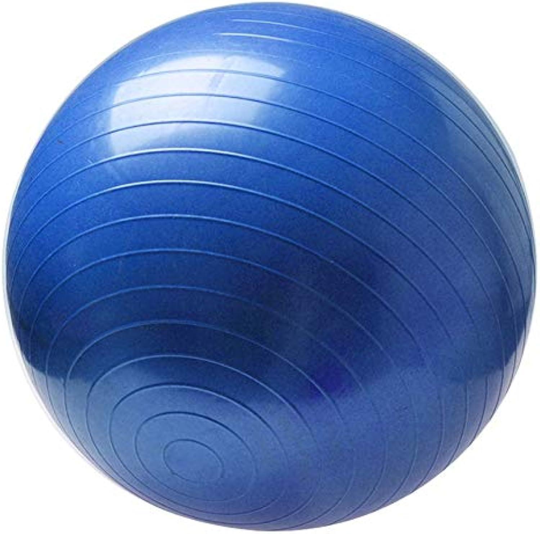 NonToxic Sports Yoga Balls Bola Pilates Fitness Gym Balance Fitball Exercise Pilates Workout Massage Ball