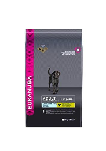 Eukanuba Adult Hundefutter für große Rassen mit neuer und verbesserter Rezeptur – Trockenfutter für Hunde im Alter von 18 Monaten - 6 Jahren in der Geschmacksrichtung Huhn – 1 x 9kg Beutel