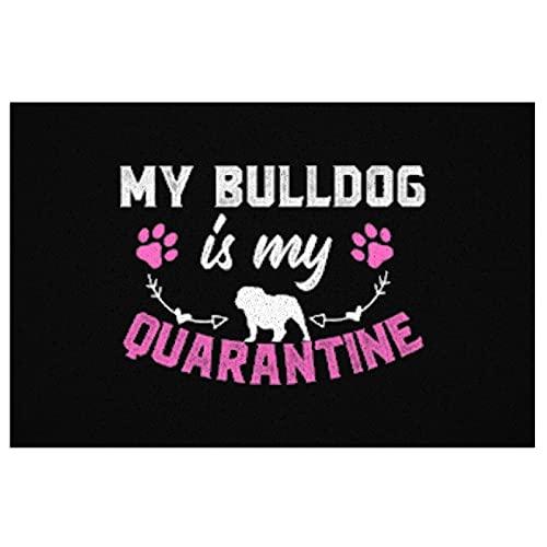 My Bulldog is My Quarantine Doormats Outdoor Indoor Mat Non-Slip Washable Mats Welcome Floor Mats